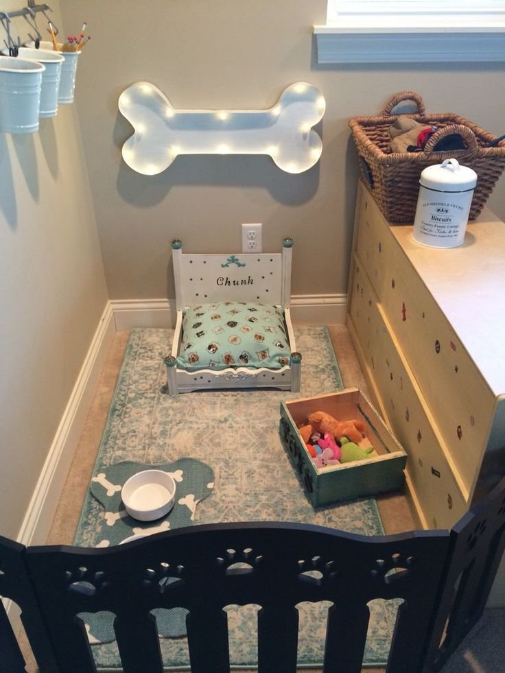 Best 25 Best Ideas About Dog Bedroom On Pinterest Dog Rooms With Pictures
