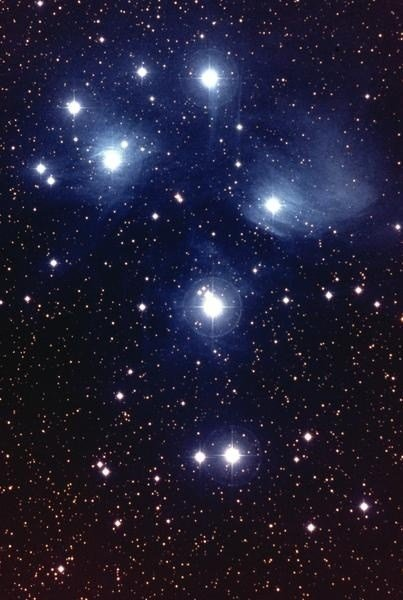 Best 25 Best Ideas About Starry Ceiling On Pinterest Ceiling With Pictures