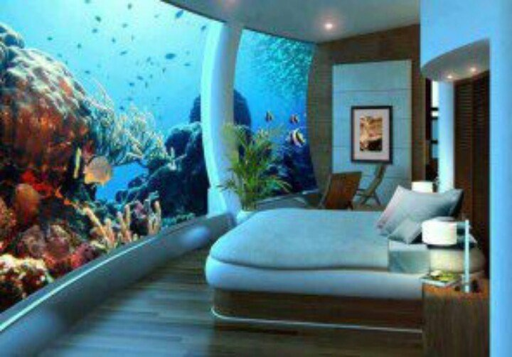 Best This Is The Coolest Bedroom In The Whole World With Pictures