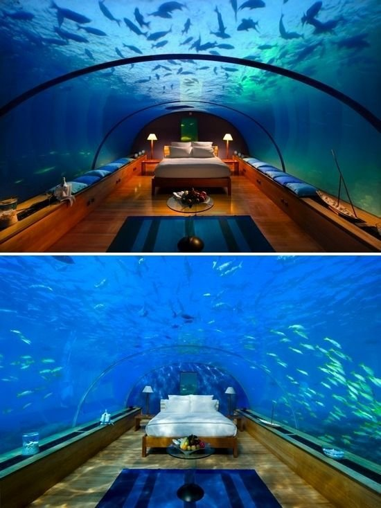 Best Underwater Restaurant Ithaa Is Celebrating Its 5Th With Pictures