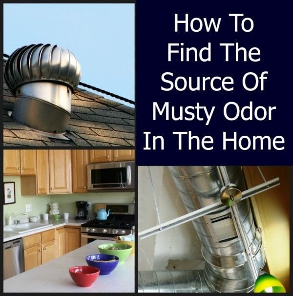 Best How To Find The Source Of Musty Odor In The Home Clean With Pictures