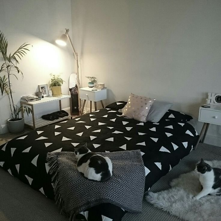 Best 25 Best Ideas About Bed On Floor On Pinterest Floor With Pictures