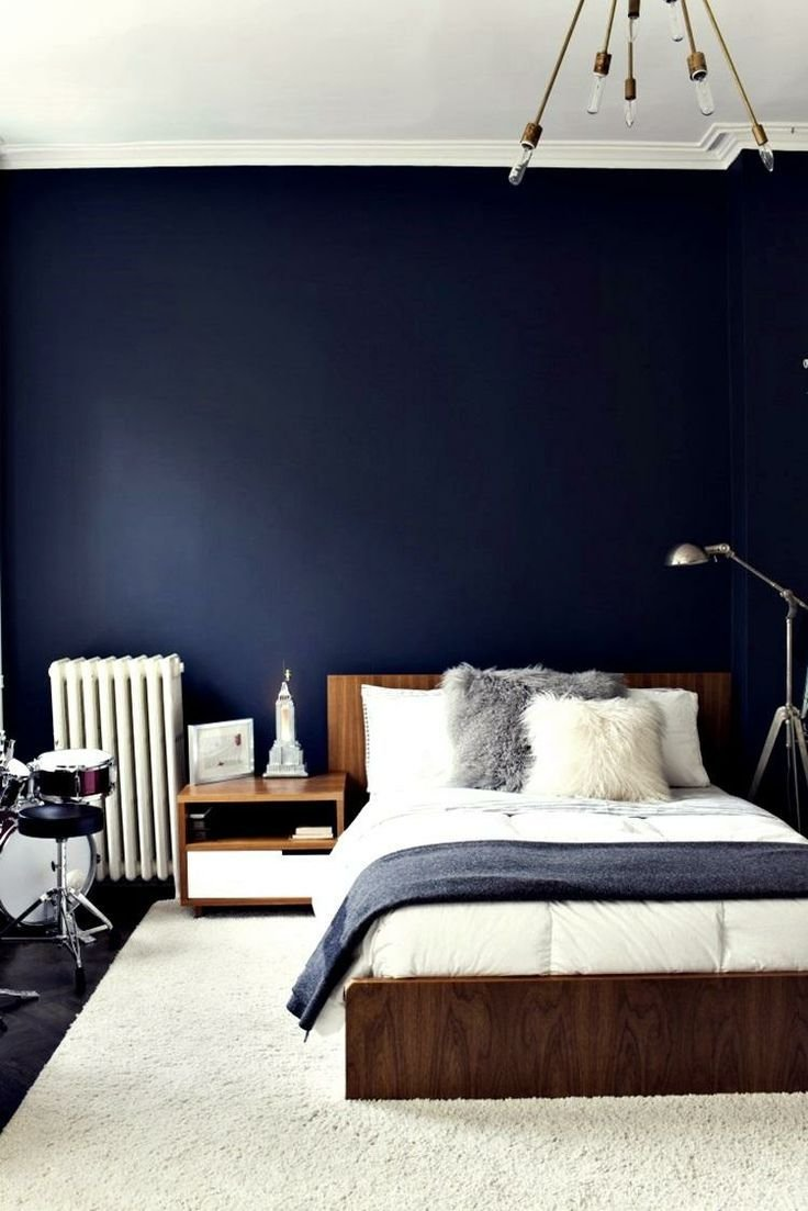 Best 17 Best Images About Navy Blue Walls On Pinterest Herons With Pictures
