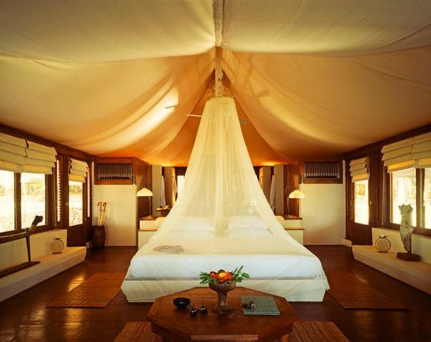 Best 78 Best Images About Safari *D*Lt Bedroom On Pinterest With Pictures