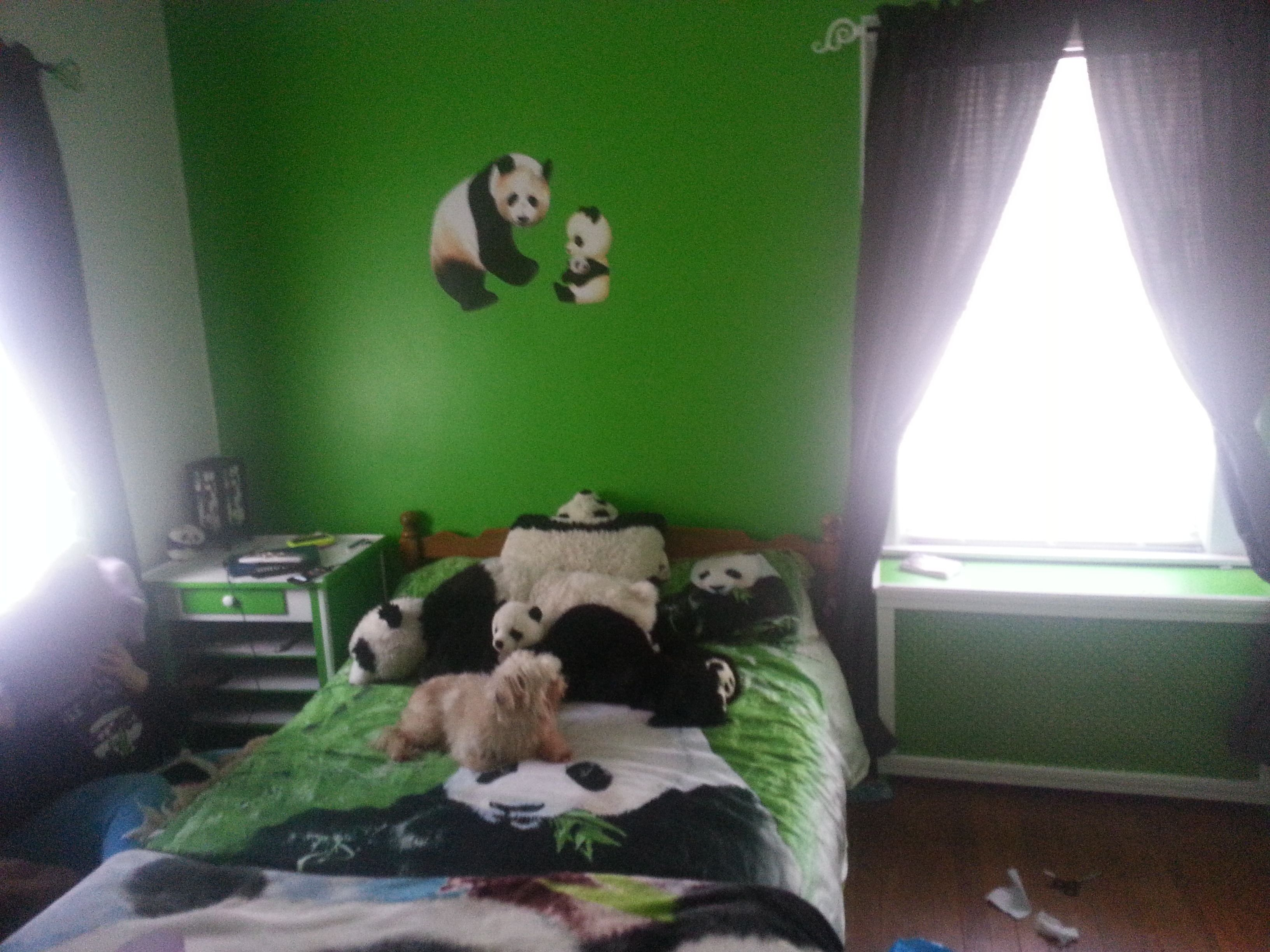 Best Panda Themed Bedroom For The Boy Pinterest Panda With Pictures
