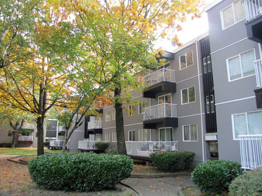 Best Pitt Meadows Apartments And Houses For Rent Pitt Meadows With Pictures
