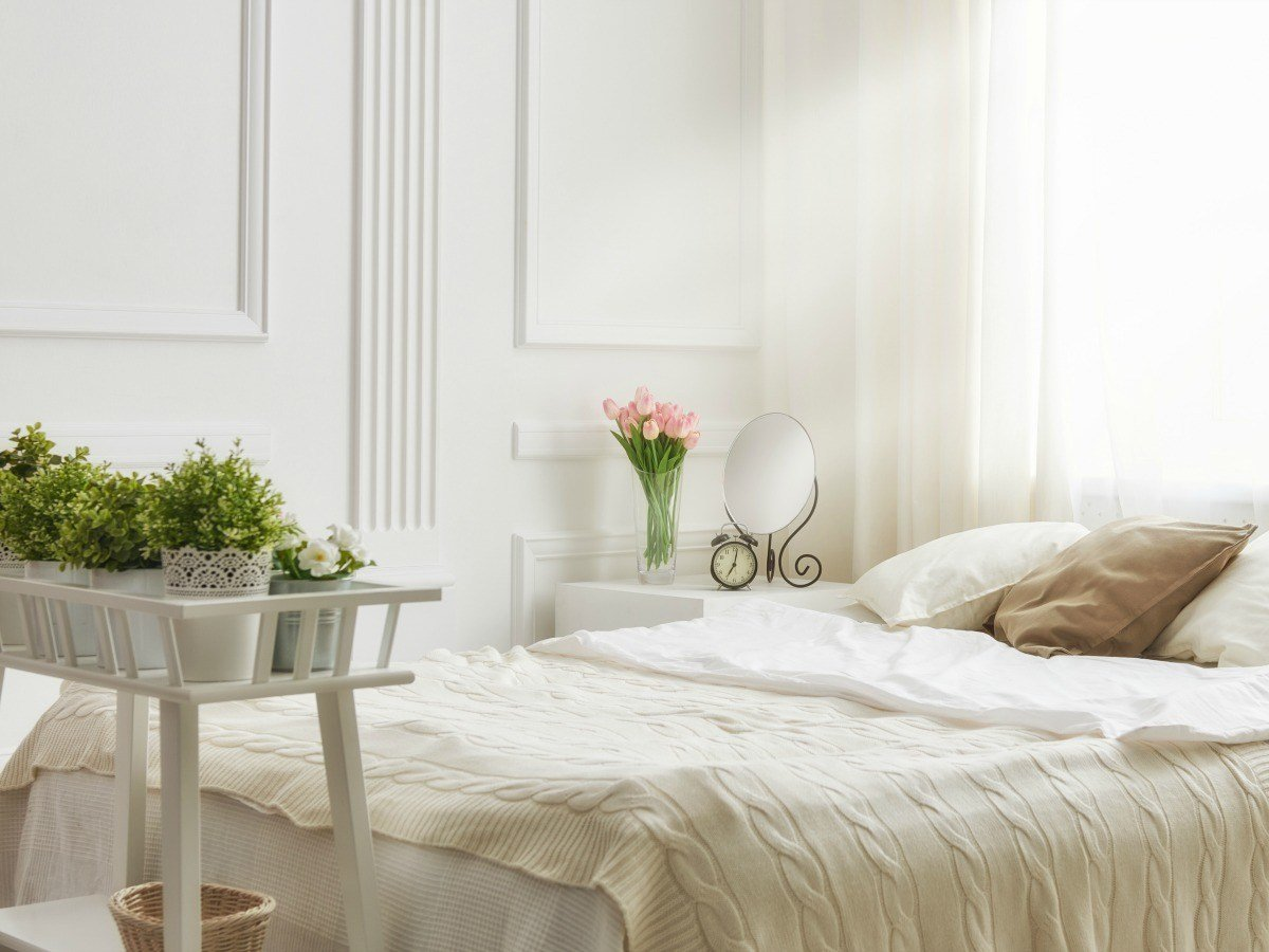 Best 7 Bedroom Plants To Help You Sleep Better The Sleep With Pictures