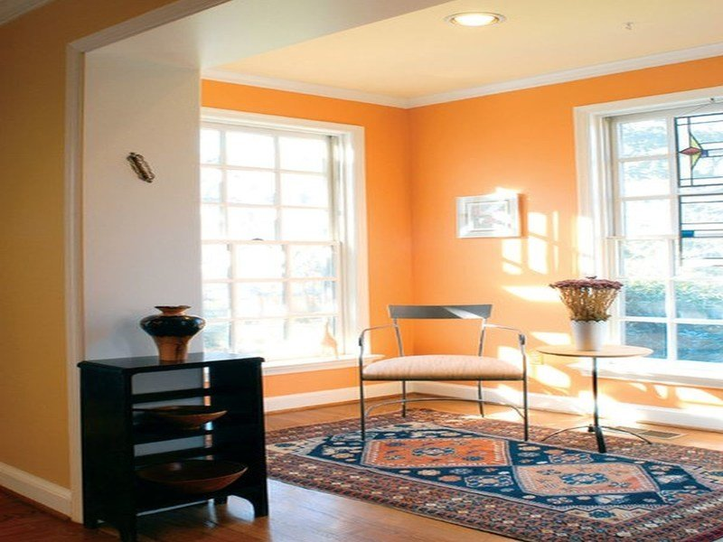 Best What Color Goes With Orange Walls Under Used Synonym The With Pictures