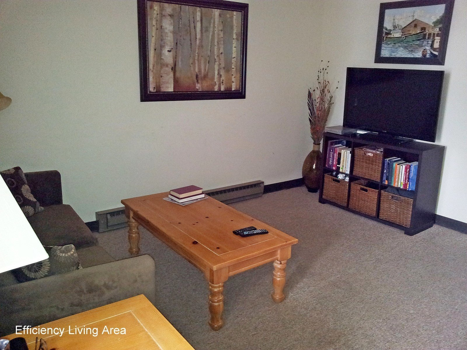 Best Efficiency 1 Bedroom Apartments Near Penn State With Pictures