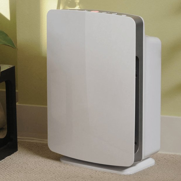 Best Top 5 Air Purifiers For Allergies Sylvane With Pictures
