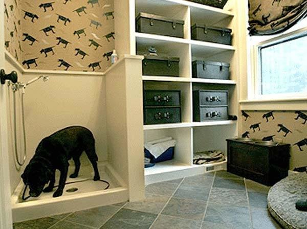 Best 17 Insanely Cool Bathroom Ideas For Your Doggies With Pictures