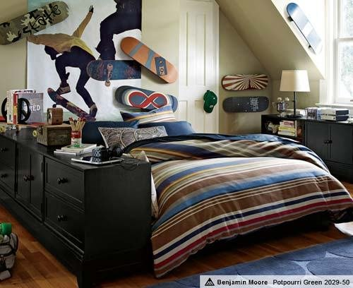 Best Skateboard Theme Room Ideas Home Interior Design With Pictures