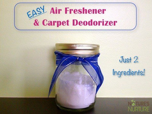 Best Homemade Room Carpet Deodorizers With Pictures