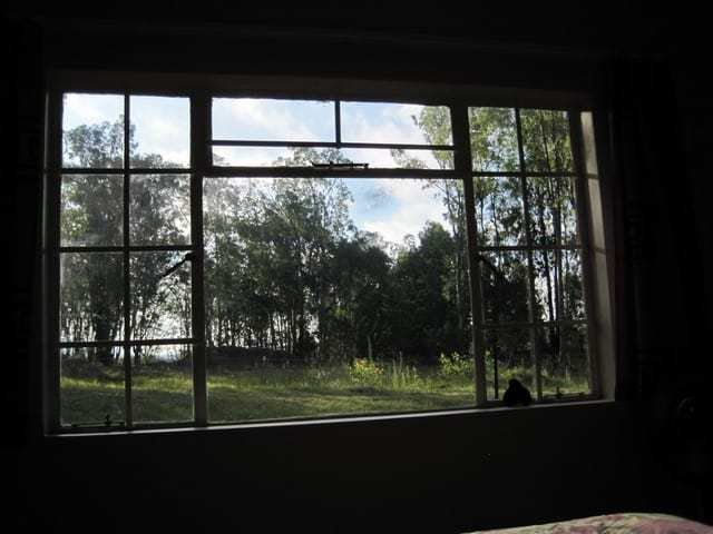 Best Super Views From Bedroom Window Designrulz With Pictures