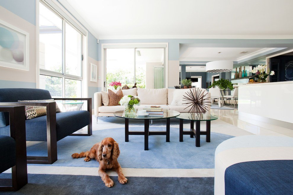 Best Choosing The Best Type Of Flooring For Dogs And Their Owners With Pictures