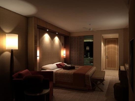 Best Overhead Light Wall Bedroom Home Interiors With Pictures