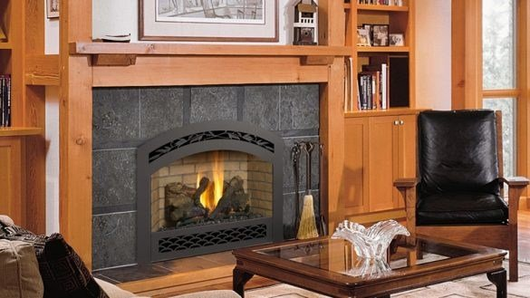Best Free Interior Awesome Propane Gas Fireplace Inserts Decor With Pictures
