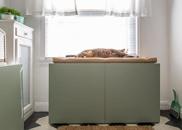 Best How To Conceal A Kitty Litter Box Inside A Cabinet Hgtv With Pictures