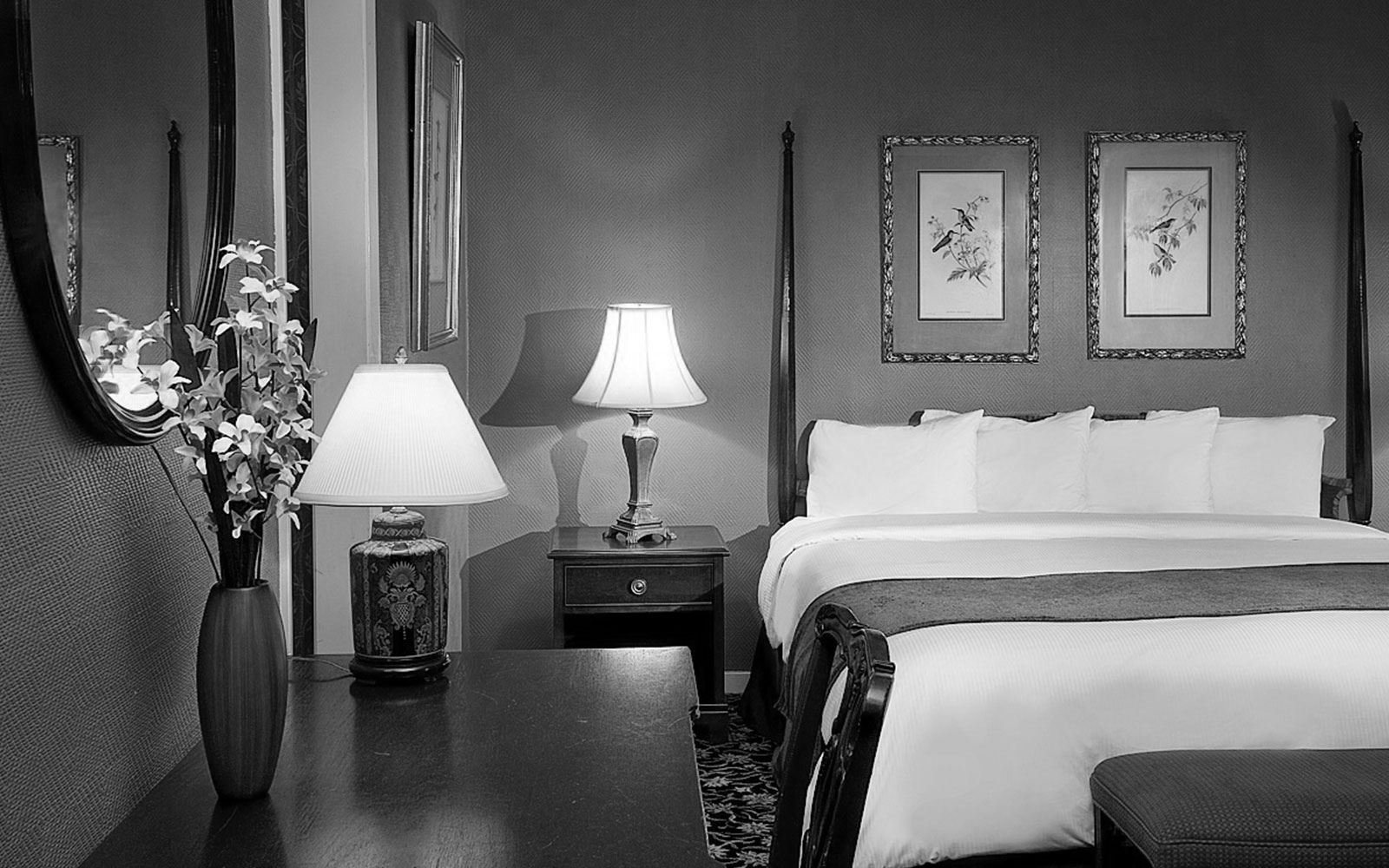 Best New Orleans Hotel Photos Maison St Charles Hotel Suites With Pictures