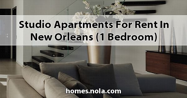Best Studio Apartments For Rent In New Orleans 1 Bedroom With Pictures