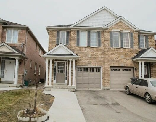 Best 1 Bedroom Basement Apartment For Immediate Rent Brampton With Pictures