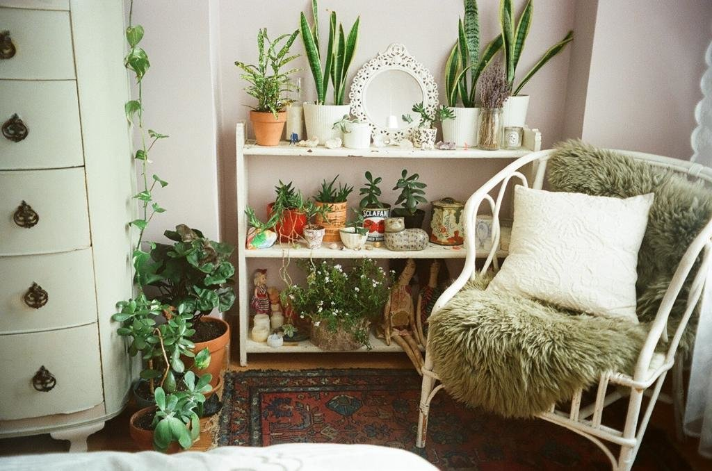 Best Bedroom Dream Home Plants Succulents Leah Reena Goren Leah With Pictures