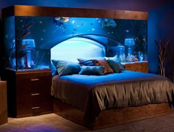 Best Aquarium Bed Creates An Underwater Sleeping Illusion With Pictures