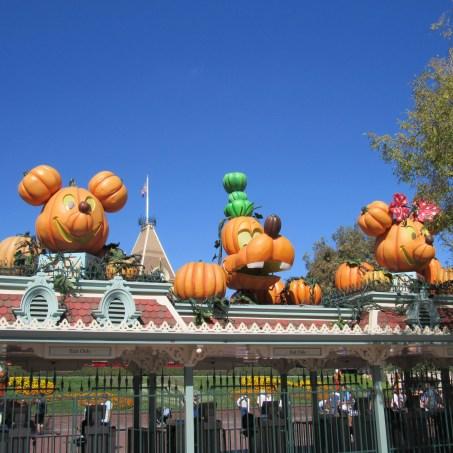 I wonder who carved these pumpkins?