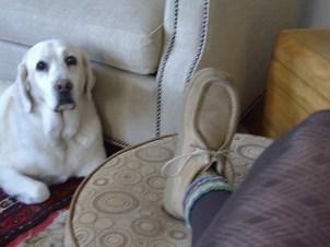 Hunker down: Chukka boots, leggings and Babe.