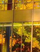 Reflection: Ira Keller Auditorium