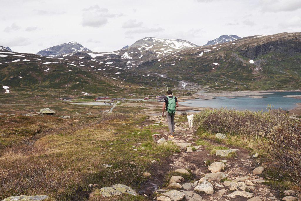 2019.06-Jotunheimen-Utsikten – Petter Olsen MoN (20)