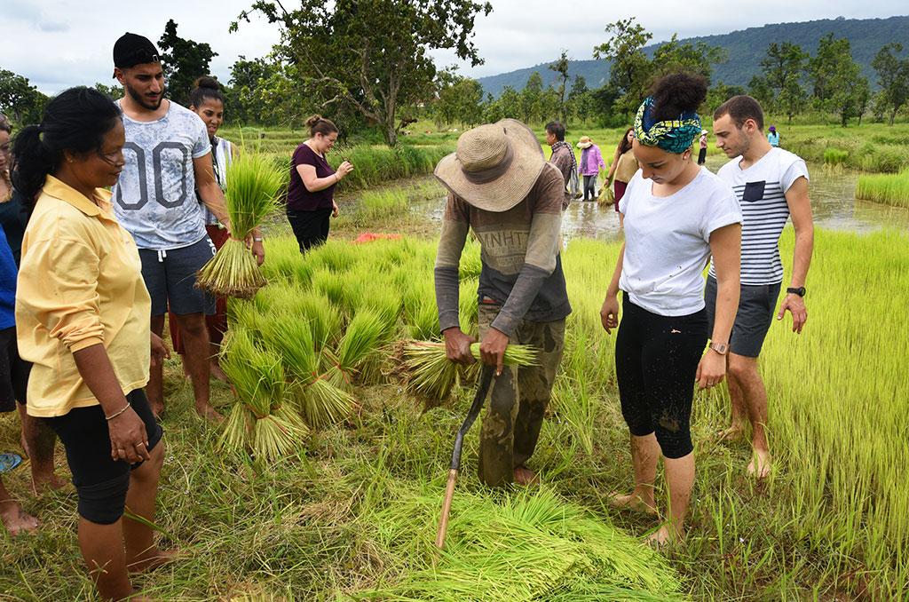 Séjour solidaire organisé par la CCAS et l'ONG Codeau Khmer, consacré à la valorisation de l'artisanat local et aux enjeux du commerce équitable, en août 2018. ©Joseph Marando/CCAS