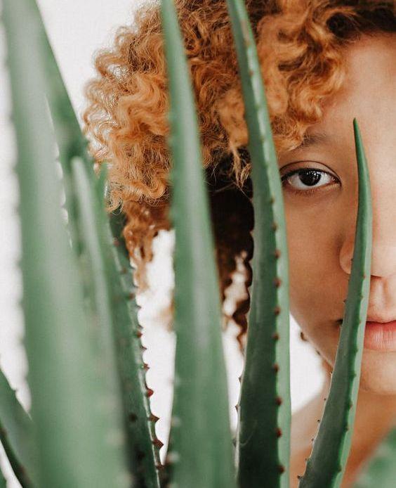 6 Manfaat Aloe Vera Untuk Tubuh dan Kulit Mu