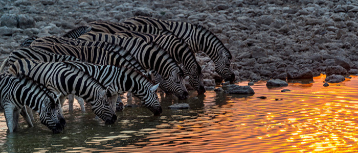 Namibia, Southern Africa.