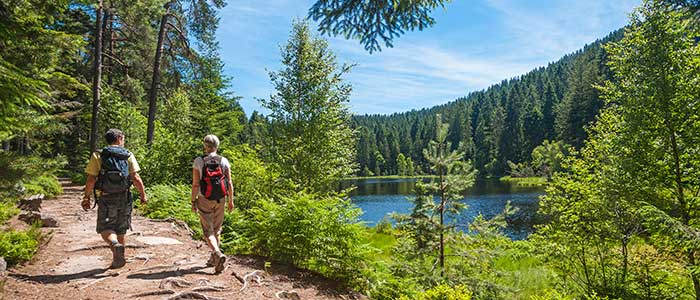 Mount Hiking Adventure Trips, Black Forest, Germany.