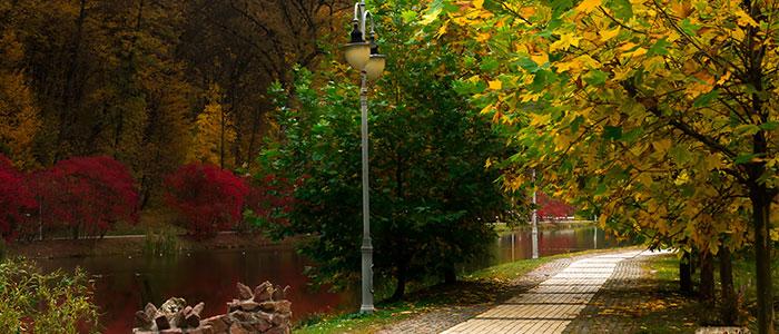 Beautiful Gardens In Kiev