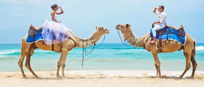 camel safari bali nusa dua