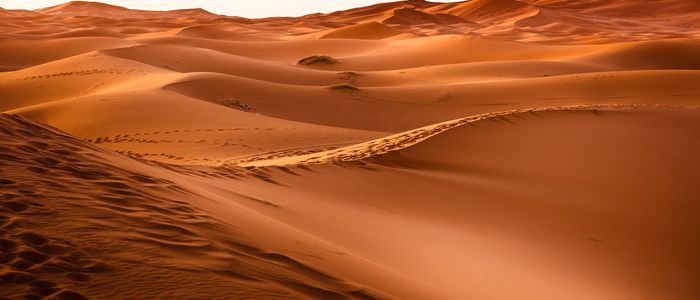 things to do in Morocco_Visit Sahara