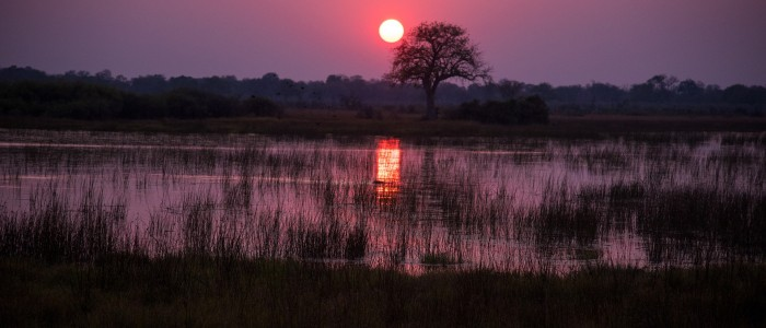 Guide to Africa Safari Holidays - Start Early