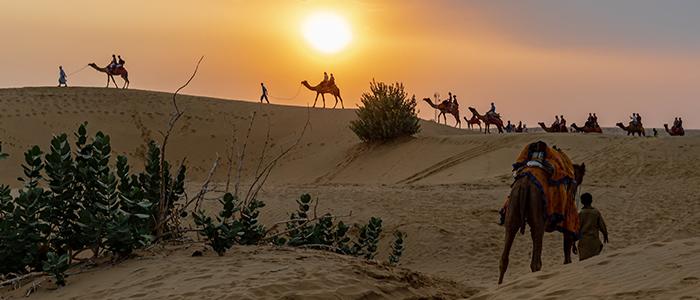 Unexplored Africa: Camel Safari