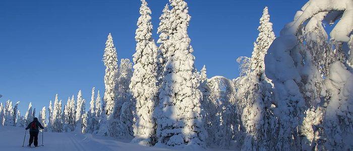 safest destinations for solo female travelers - Finland
