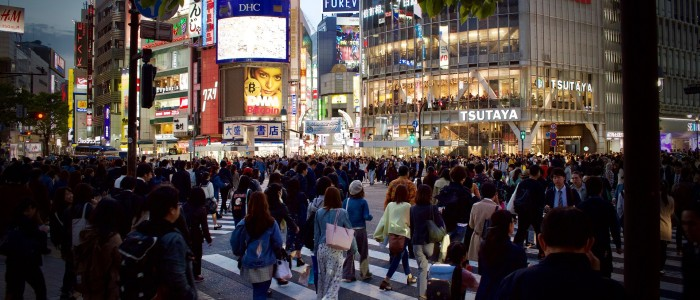 Top Things To Do In Japan - Tokyo City