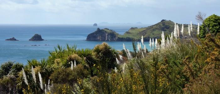 Things To Do In New Zealand - Coromandel Peninsula