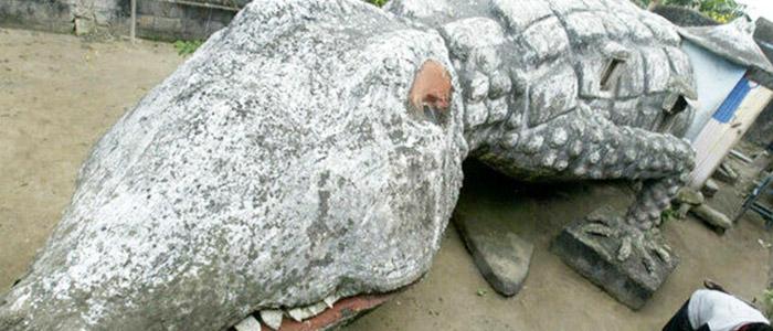 The Crocodile House