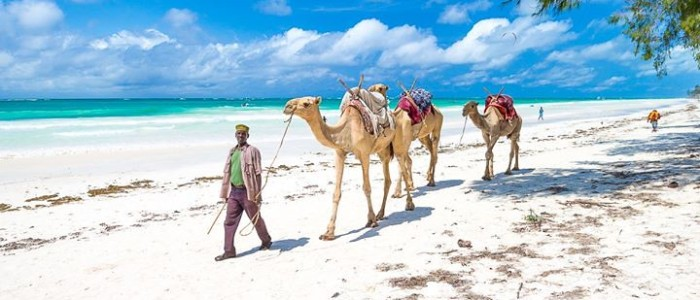 Diani Beach Kenya Travel