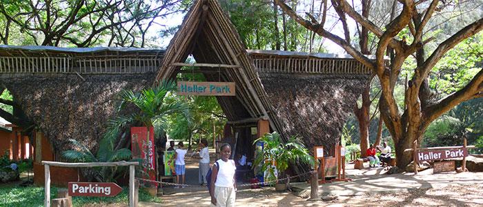 Haller Park Kenya