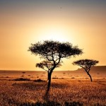 10 Most Amazing Places To Visit In Kenya