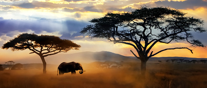 Beautiful African landscapes