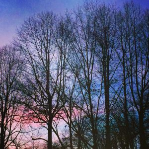 Sunsetoverstrip