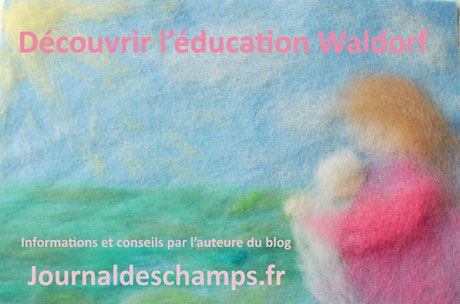 waldorf-education-web